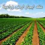 نموذج عقد ايجار ارض زراعية وورد بصيغة doc